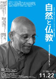 20151122suma.jpg